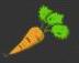 pause carotte